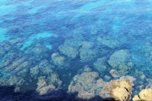 underwater reef, The Hidden Power of the Truth, Making Relationships Work
